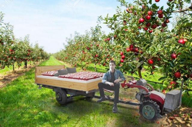 Schlafen unterm Apfelbaum_Rapid_MillionStarsHotel Kopie